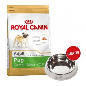 Royal Canin Pug 25 Adult 1,5kg + Edelstahlnapf silber gratis