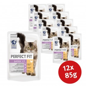 Perfect Fit Cat Junior reich an Huhn in Gelee 12x85g