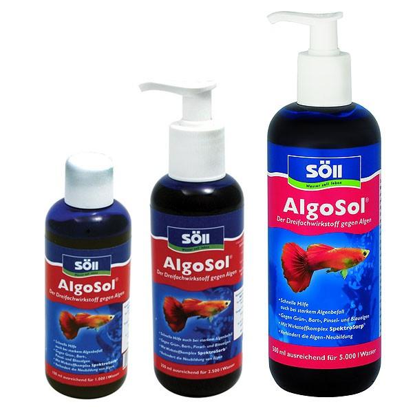Söll AlgoSol gegen Algen