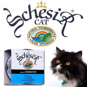 Schesir Katzenfutter in Gelee 14x85g-Dosen