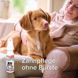 beaphar Zahnpflege für Hunde und Katzen im Zerstäuber 150ml