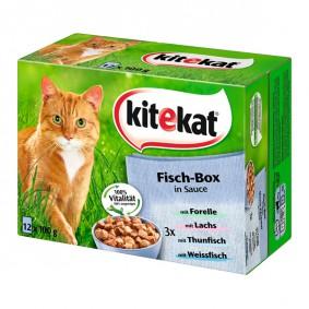 Kitekat Katzenfutter Fisch-Box in Sauce 12x100g