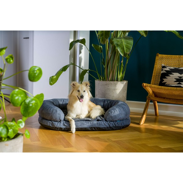 ZooRoyal Orthopädisches Hundebett Lasse