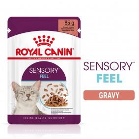 Royal Canin Sensory Feel Gravy