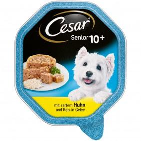 Cesar Senior 10+ mit zartem Huhn und Reis in Gelee