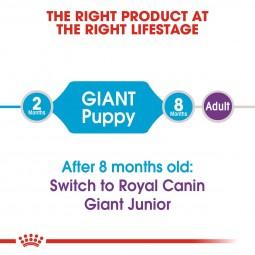ROYAL CANIN GIANT Puppy Trockenfutter für Welpen sehr großer Rassen