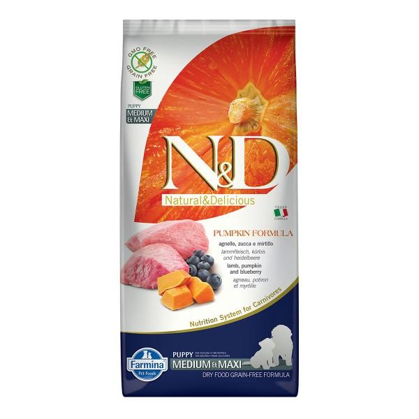 N&D Dog Kürbis Kabeljau & Orange Adult Medium Maxi 12 kg