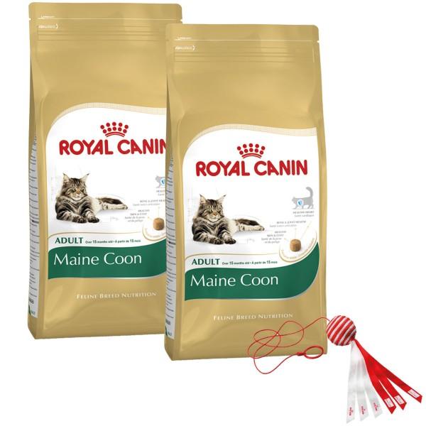 Royal Canin Katzenfutter Maine Coon Adult 2x10kg plus Spielzeug gratis