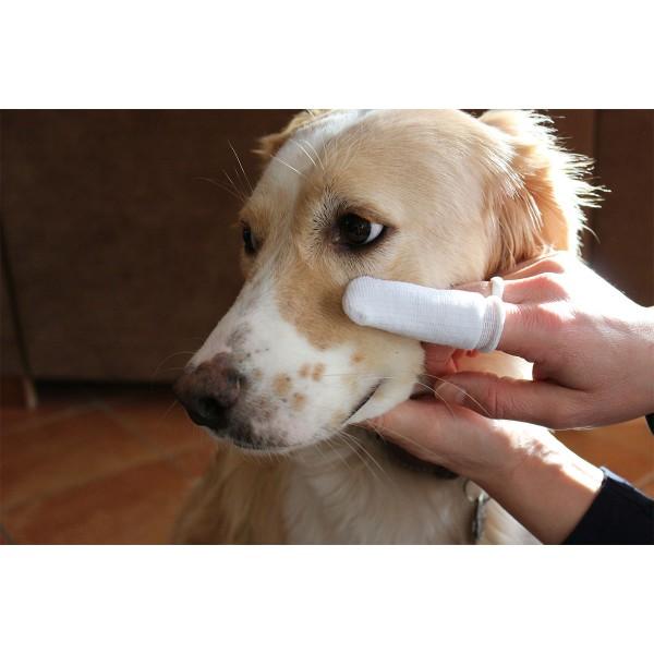 beaphar Augen- & Ohrenpflege Fingerling - 2 Stück