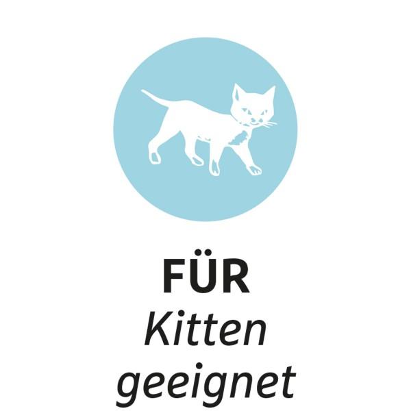 ZooRoyal Schmusekissen mit Katzenminze 3 Stück Design 4 & 5 & 6