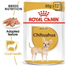 ROYAL CANIN Chihuahua Adult Hundefutter nass 12x85g