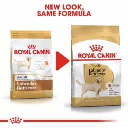 ROYAL CANIN Labrador Retriever Adult Hundefutter trocken