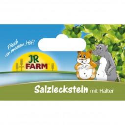 JR Farm Salzleckstein 80g