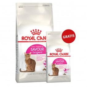 Royal Canin Katzenfutter Savour Exigent 10kg+2kg gratis