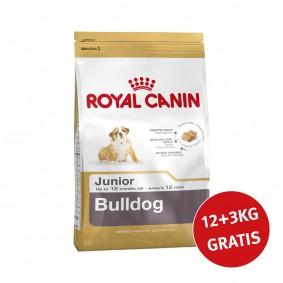 Royal Canin Bulldog Junior 12kg+3kg Gratis!