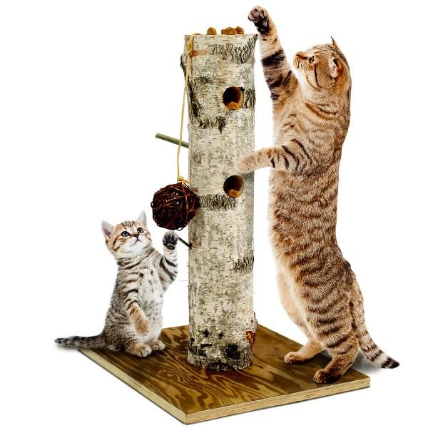JR Farm Back to Instinct Cat Aktiv-Baum