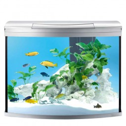 Tetra AquaArt II Evolution Line Aquarium-Komplett-Set
