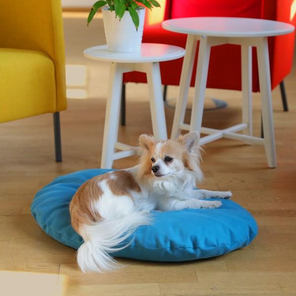 Dog Bed Solution Lana Petrol 70x49cm + Dental Knochen grün