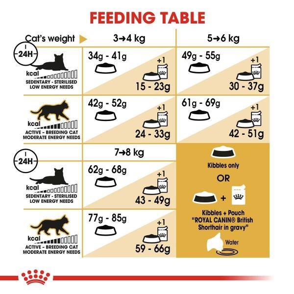 ROYAL CANIN British Shorthair Katzenfutter trocken für Britisch Kurzhaar