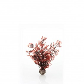 biOrb Aquariumpflanze dunkelroter Seefarn