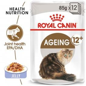 ROYAL CANIN AGEING 12+ in Gelee Nassfutter für ältere Katzen 12x85g