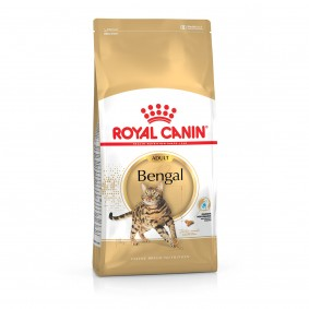 Royal Canin Katzenfutter Bengal Adult