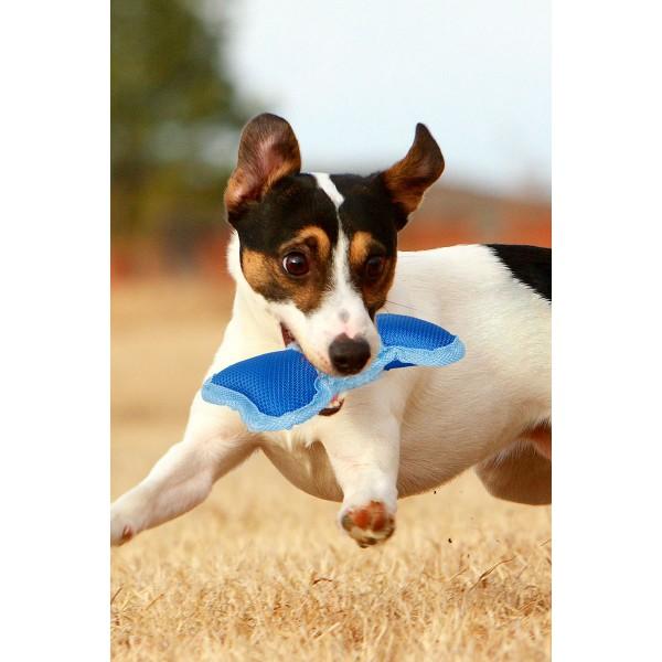 Cesar Millan Hundespielzeug Boneville Mini