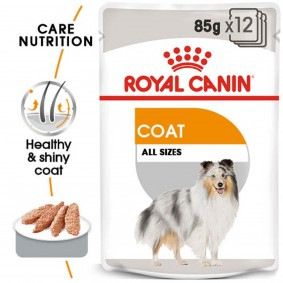 ROYAL CANIN COAT CARE Nassfutter für glänzendes Fell