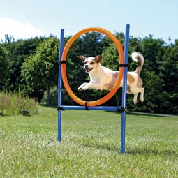 Trixie Dog Activity Agility Set vierteilig