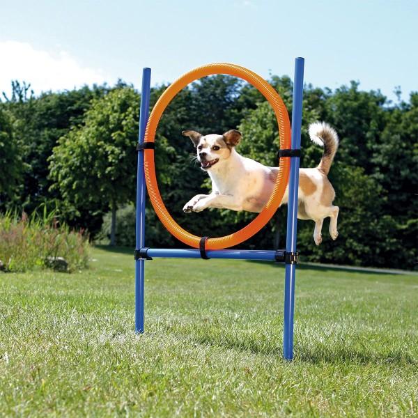 Trixie Dog Activity Agility kruh